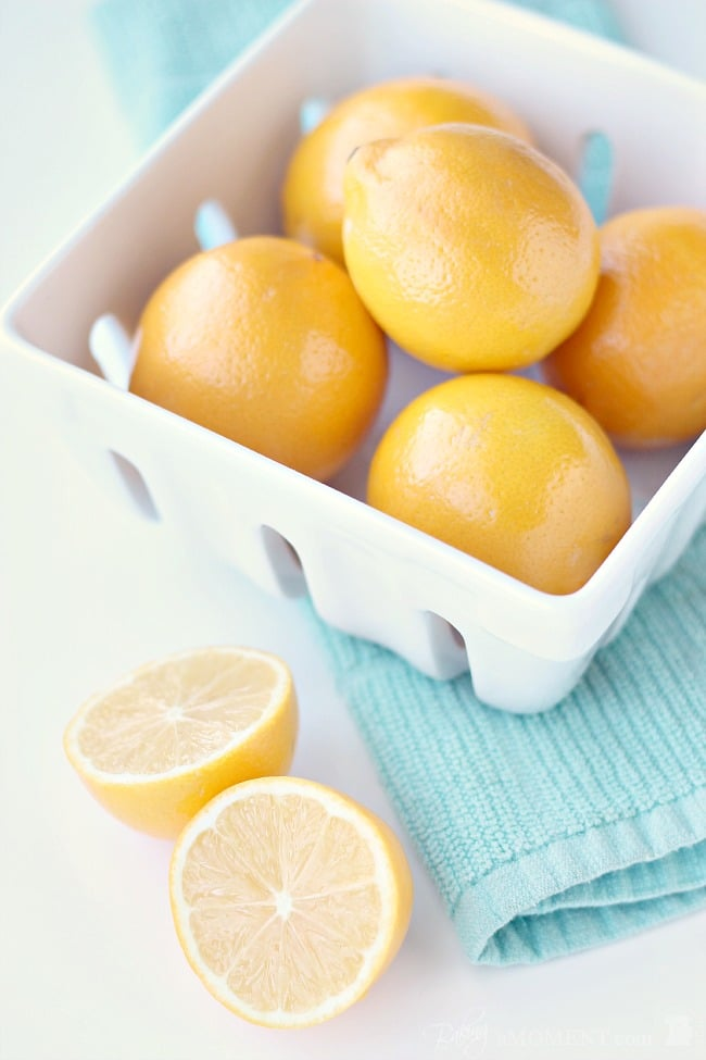 Meyer Lemons | Baking a Moment