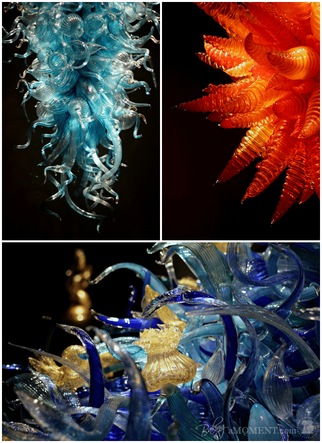 Chihuly Glass | Baking a Moment