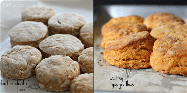 How to Make Biscuits with Flaky Layers
