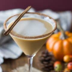 Pumpkin Spice Latte Martini- LOVED this drink! So much delicious fall flavor, just like a Starbucks PSL but BOOZY!