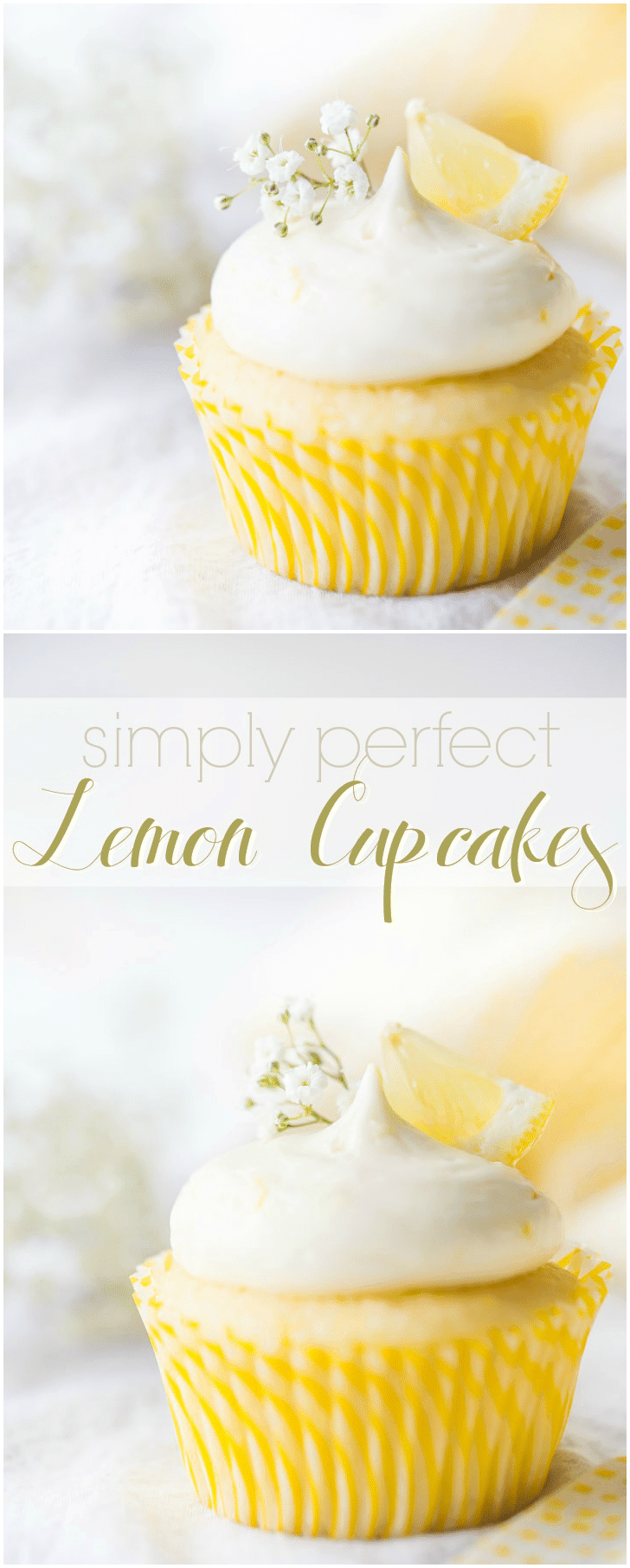 Hands-down the best lemon cupcakes ever! The cake was so moist and soft, the lemon curd filling was so bright & citrus-y, and the lemon cream cheese frosting was the perfect compliment. Great recipe for a lemon lover! #lemon #cupcakes #fromscratch #easy #recipe #withfilling #moist #best #decorations #homemade #withcreamcheeseicing #wedding #easter #simple #fluffy #triple #frosting #fresh #creamcheese #pretty #stuffed #curd #perfect