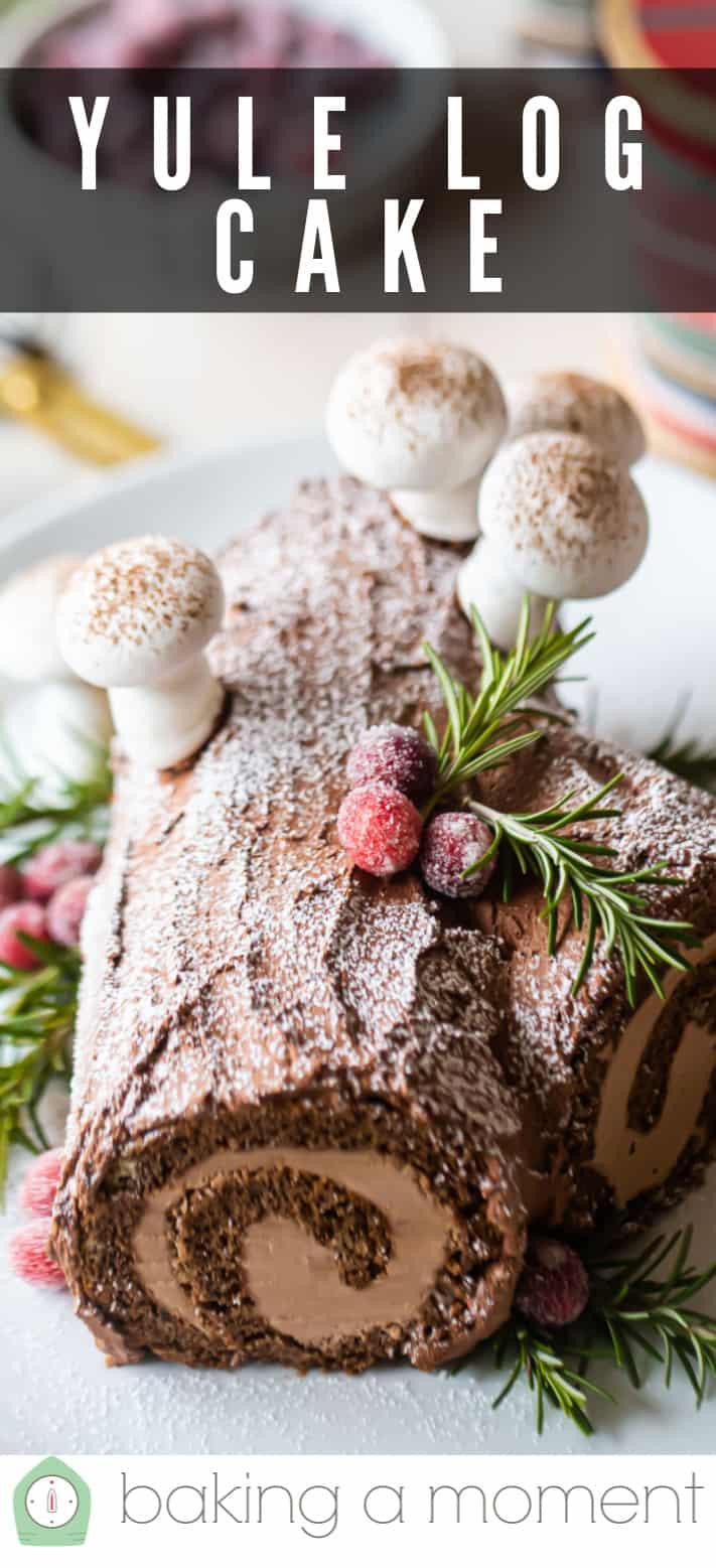Yule log cake buche de noel pin 2.