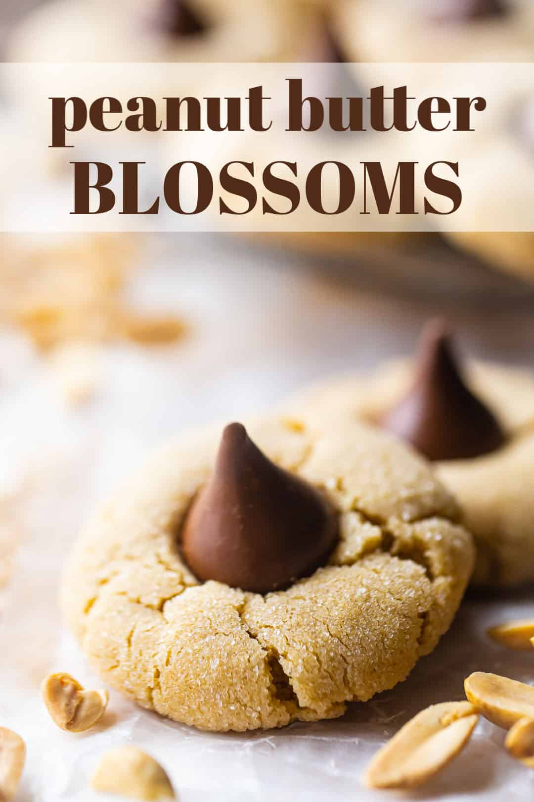 "Peanut butter blossom cookies with peanuts in the background and a text overlay above reading ""Peanut Butter Blossoms."""