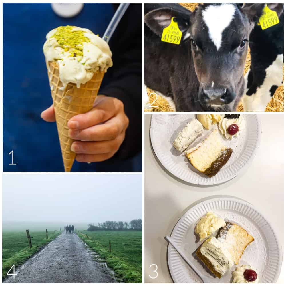 Photo collage featuring images of Irish dairy products and farms.