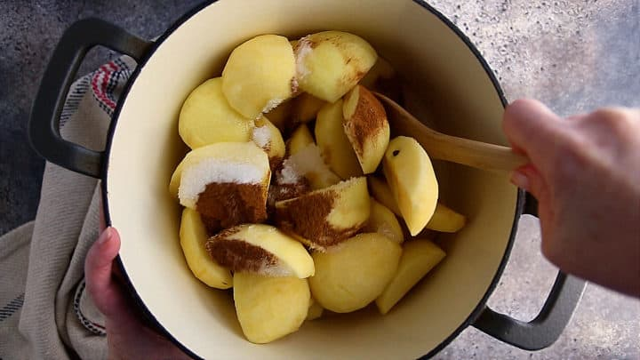 Apples, water, sugar, and cinnamon in a large pot.