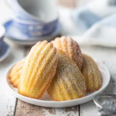 Madeleine cookies dusted with powdered sugar and arranged on a white ceramic plate.